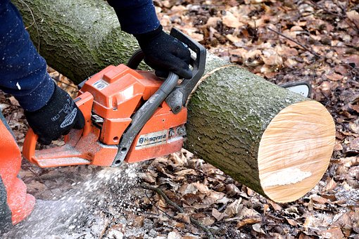 Cutting through tree tunk with a chainsaw